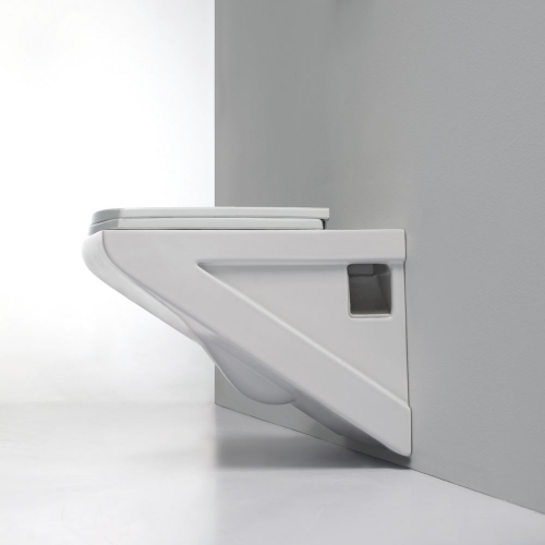 Wall Hung Toilet And Soft Close Seat  - Geo By Synergy