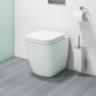 Back To Wall Pan & Soft Close Seat - R10 By Voda Design